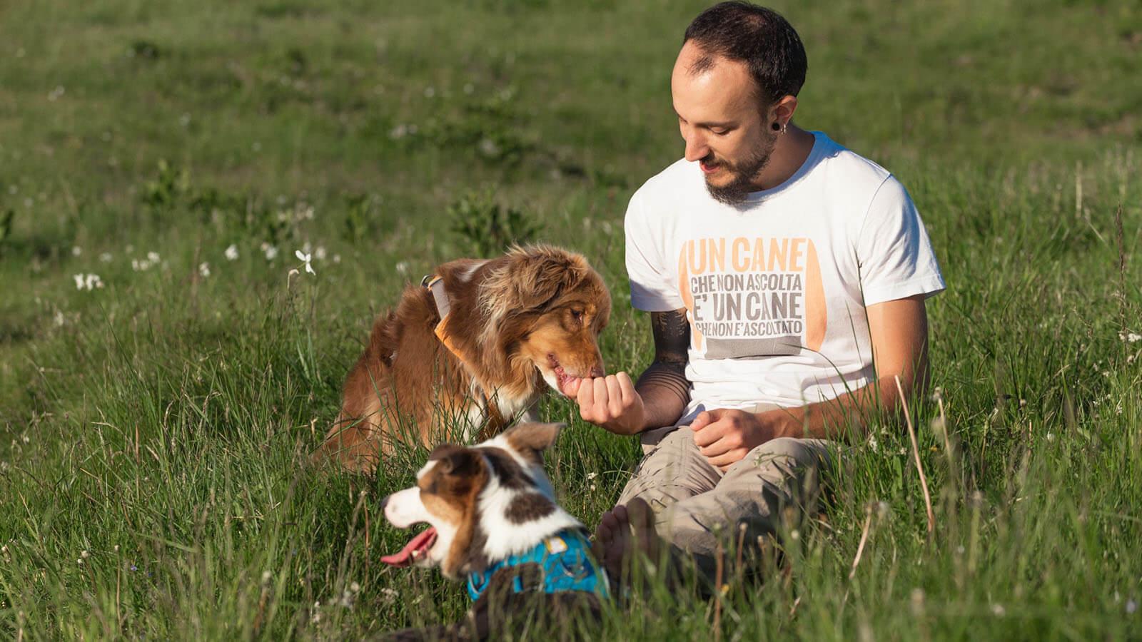 Dog sitter a Udine e provincia Francesco Desomaro