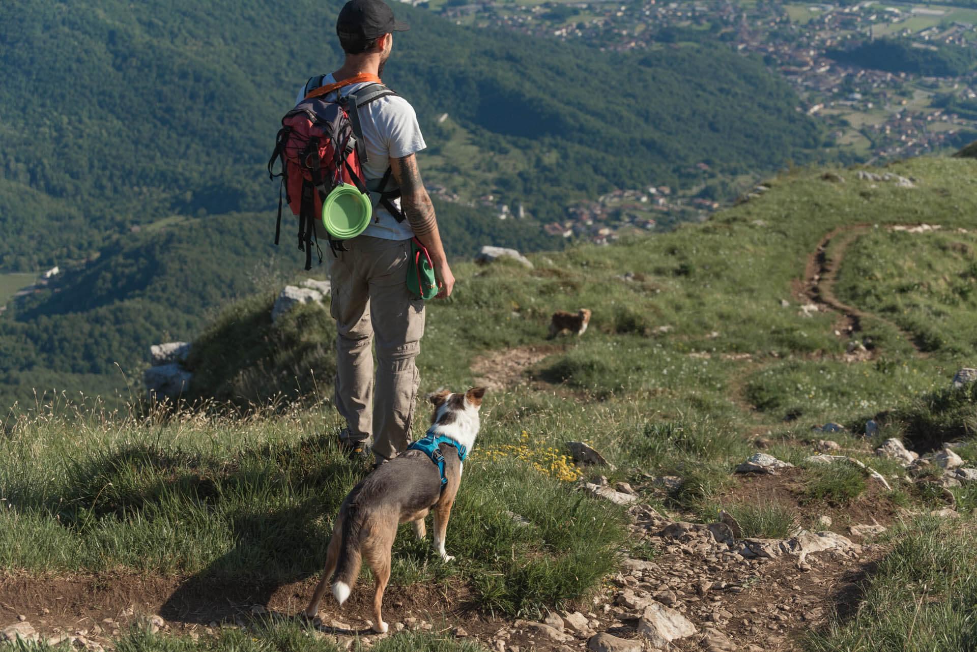 Trekking e passeggiate con cani a Udine e provincia