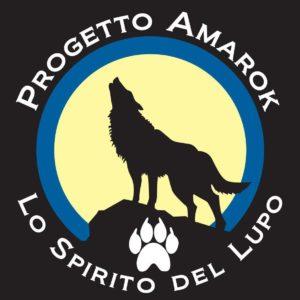 Francesco Desomaro Tecnico Amarok dog trekking I livello